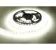 LED páska 5050 denní bílá 1m 14,4W 12VDC - 1/2