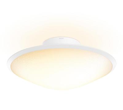 Phoenix-ceiling lamp-Opal white 3115131PH - 3