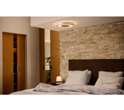 Being Hue ceiling lamp aluminium 1x32W 3261048P7 - 6