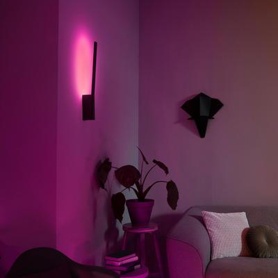 Liane Hue wall lamp black 1x12W 24V - 6