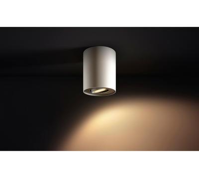 Pillar Hue ext.single spot white 1x5.5W 5633031P8 - 6